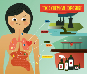 how to be healthy with less toxic exposure
