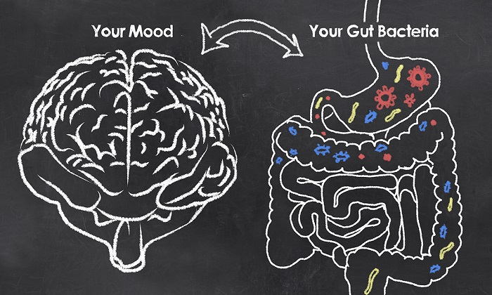 gut health mood photo
